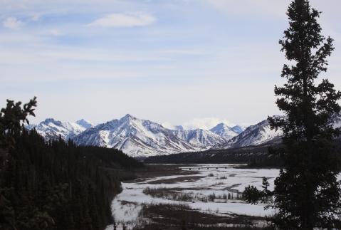 Mountains in the Denali National Park, Alaska